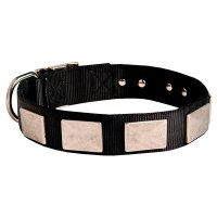 Nylon Dog Collar With Beautiful Vintage Plates