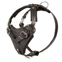 Sturdy Agitation/Protection Leather Dog Harness