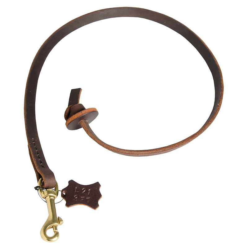 Super comfortable and reliable leather leash 1/2 inch wide